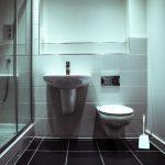 WC-Bürste-Safe2